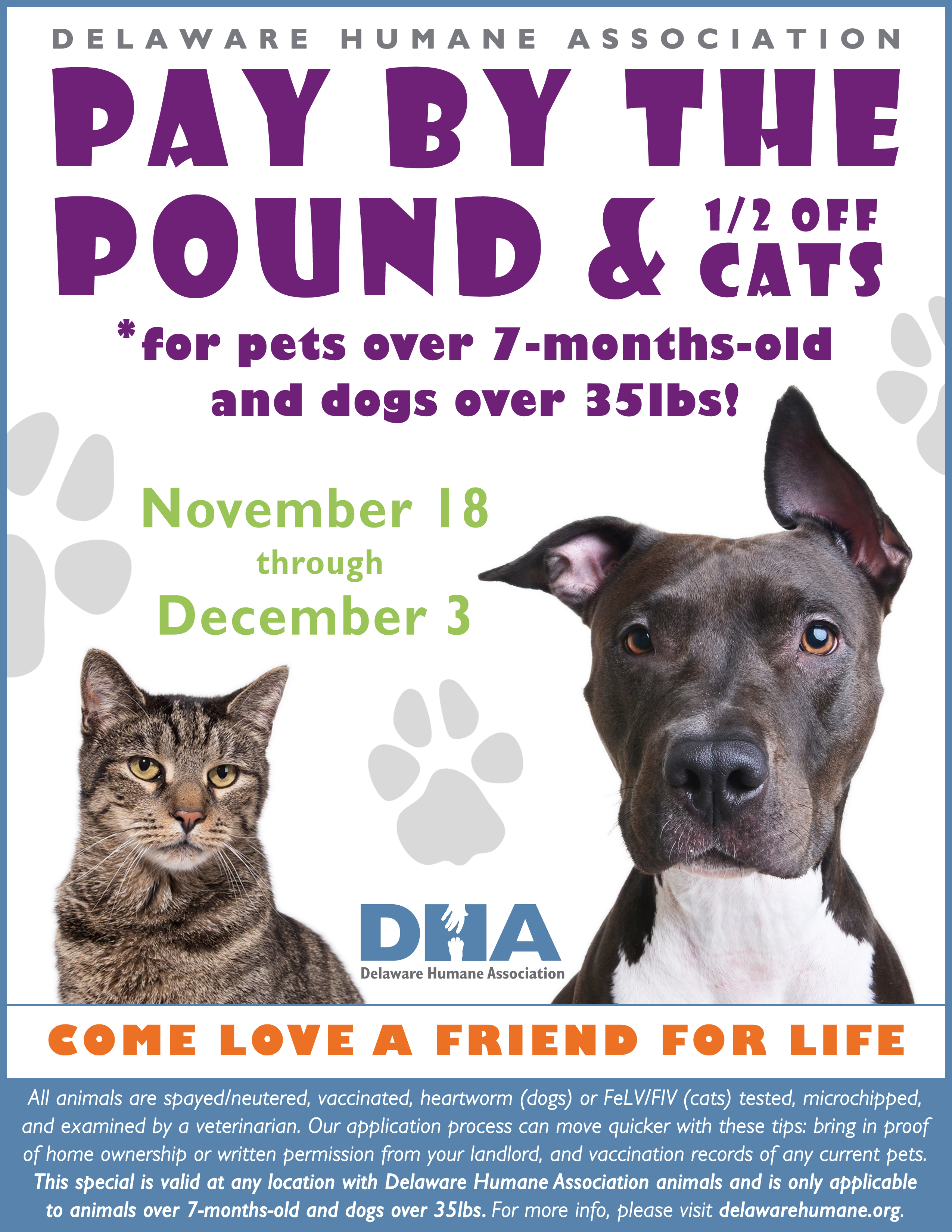 Pay By the Pound & Half f Cats Adoption Special Delaware