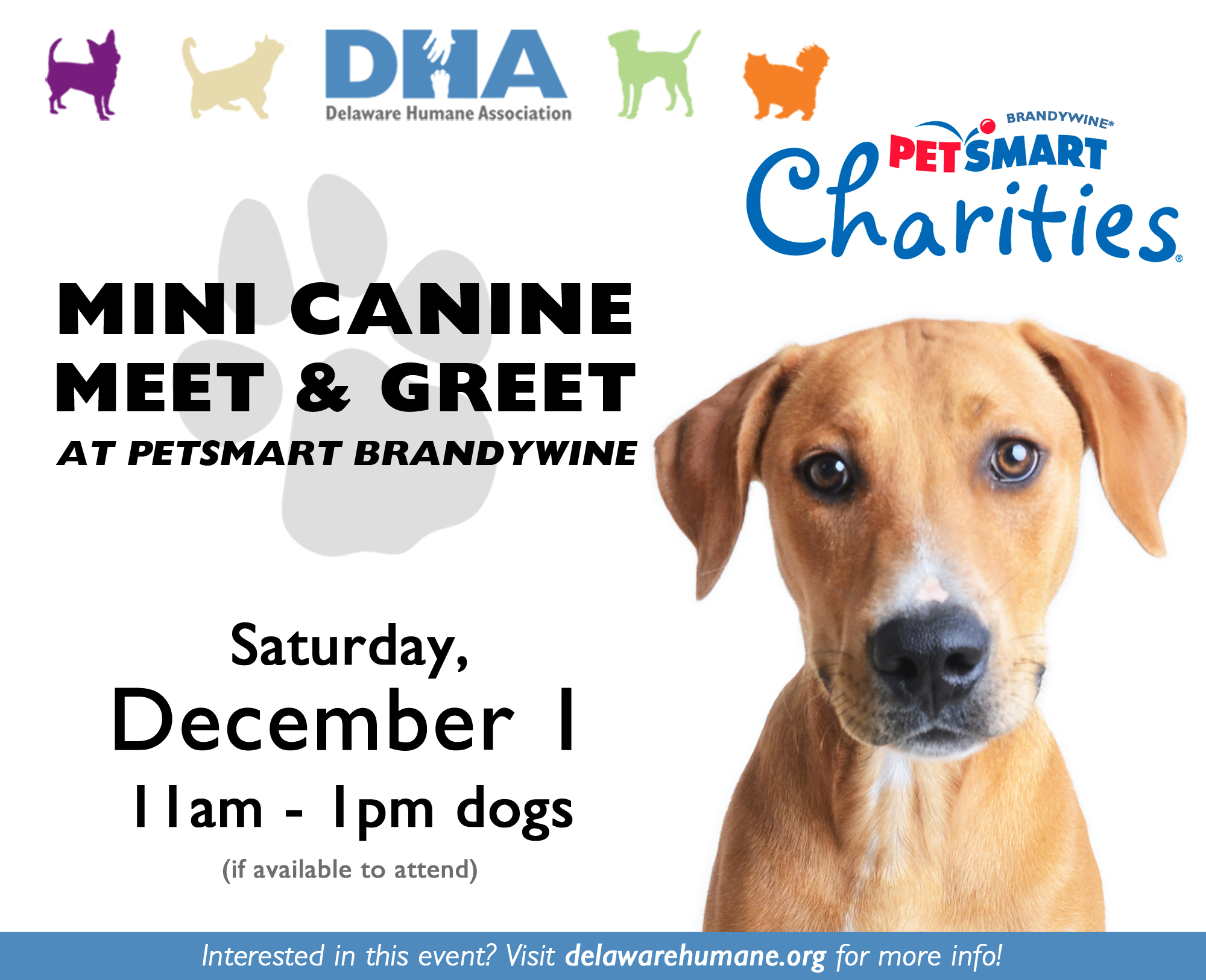 mini meet greet petsmart brandywine delaware humane association