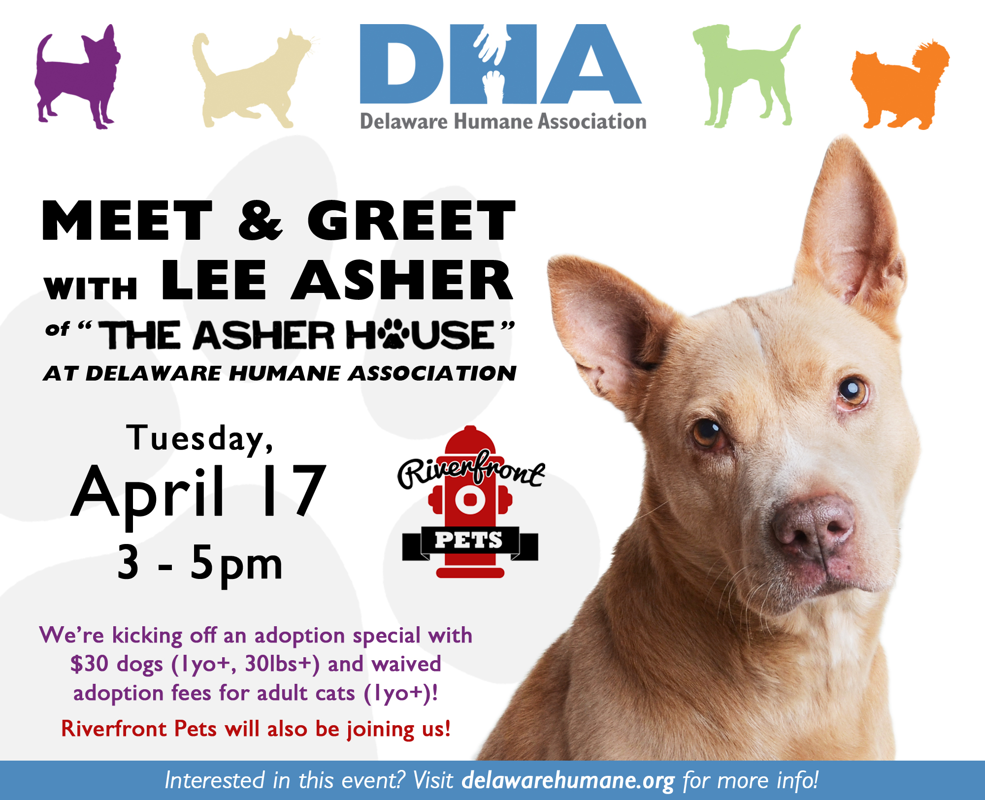 Meet greet with lee asher adoption special delaware humane meet greet with lee asher adoption special m4hsunfo