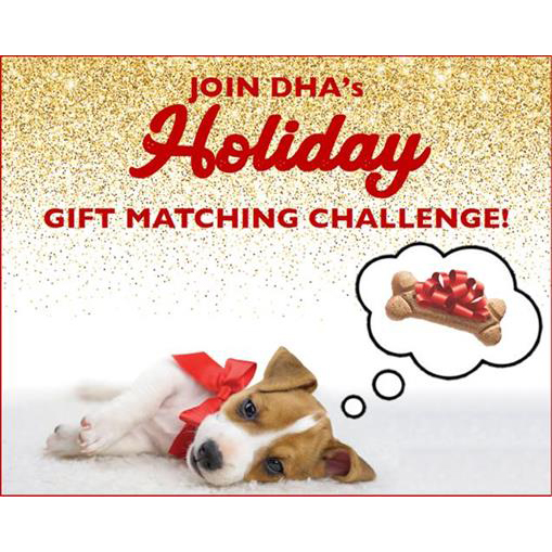 DHA's Holiday Matching Gift Challenge?