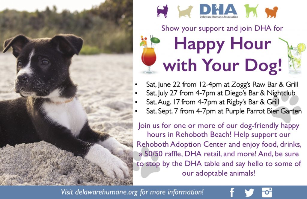 Home | DHA | Delaware Humane Association | Friends For Life