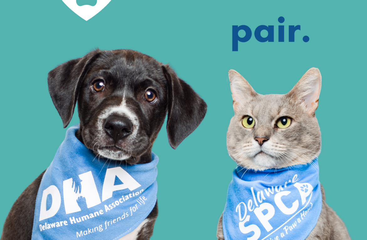 Delaware Humane Association and Delaware SPCA Announce Intention to Merge